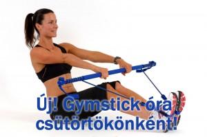 gymstick3